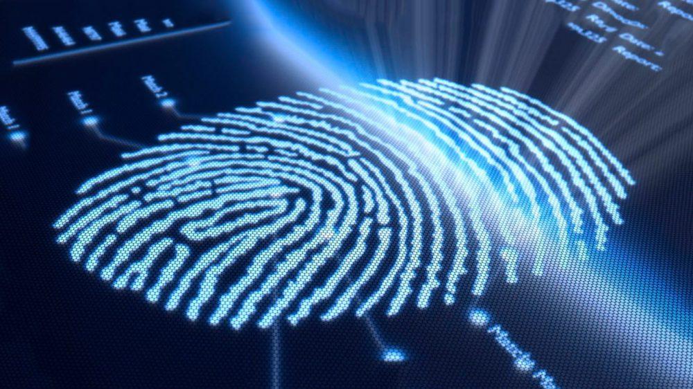 Биометрические паспорта фото